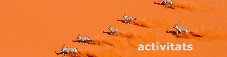 antilops2